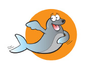 sealion swimming lessons