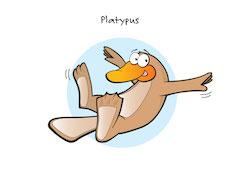 No - Platypus1