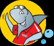 shark-right-bubble
